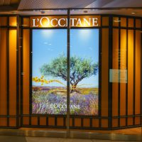 L'Occitane Limelight by Alcone stake expansion news - Retail in Asia