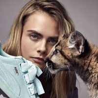 Puma quarterly sales pushed on by women's sneakers , APAC up 10%.